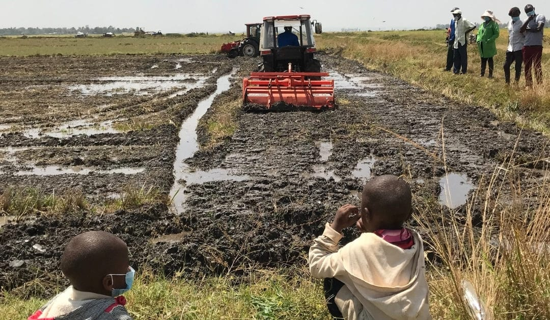 Demonstration of Japanese used agricultural machinery in MWEA area